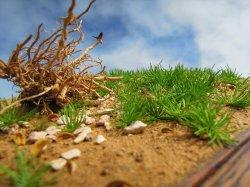 Photo2: Iroha[MS-019] Grass Bush Set