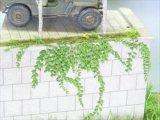[Kamizukuri] [A-24] Ivy(1/35)
