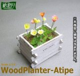 [Kamizukuri] [G-38] Wood Planter A type